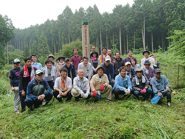 富士山育林活動